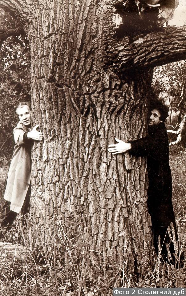 Фото 2 Столетний дуб