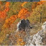 Золотая осень в Жигулях фото Г.Лебедевой р