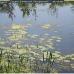 Мордово эколагерь 2011 (12)