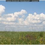 Мордово эколагерь 2011 (24)