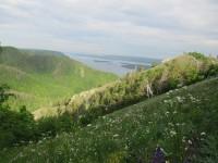 Стрельная гора летом. Фото Егоровой В.