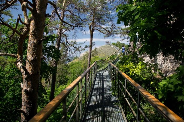 Экскурсионный маршрут Стрельная гора. Кондратьев