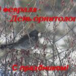 19 февраля — День орнитолога!